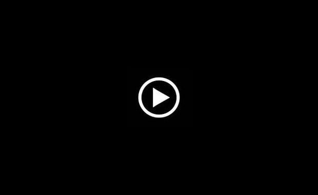 母子受精 根元純 AV動画